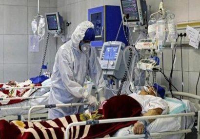فاجعه انسانی در کمین کردستانی ها/همه گیری ویروس کرونا در روزهای آتی تشدید می یابد