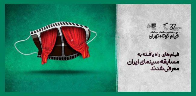 حضور هنرمندان سنندجی با ۳ اثر در سی و هفتمین جشنواره بین المللی فیلم کوتاه تهران