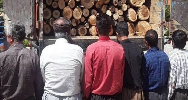 عاملان قطع درختان جنگلی در حسین آباد سنندج دستگیر شدند